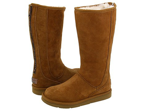 bottes type ugg pas cher